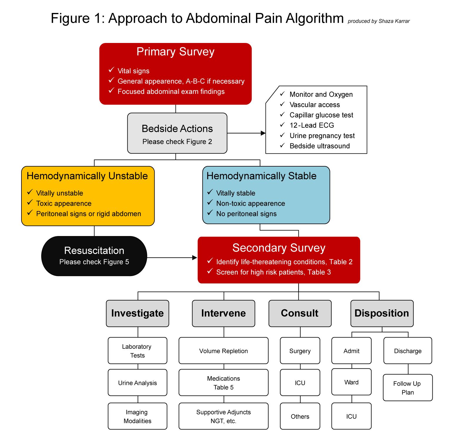 Abdominal Pain – International Emergency Medicine Education